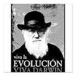 Viva Old Man Darwin Square Car Magnet 3