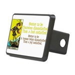 The Fool Satisfied Rectangular Hitch Cover
