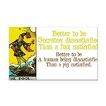 The Fool Satisfied Rectangle Car Magnet