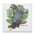 Tropical African Greys Tile Coaster