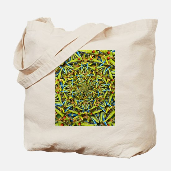 Forms of Nature 14 : Tree Frog Tote Bag