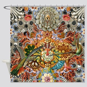 Forms of Nature 1 Shower Curtain