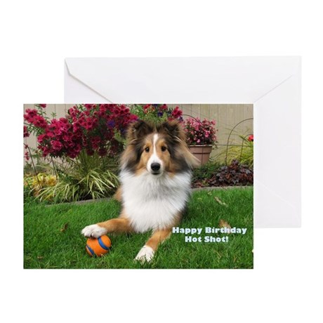 Happy Birthday Hot Shot Greeting Cards (Pk of 20)