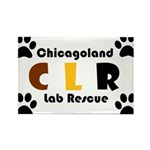 CLR Rectangle Magnet