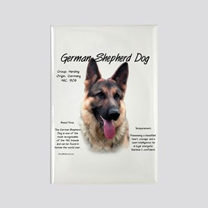 GSD Rectangle Magnet