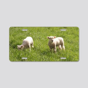 Young Twins Aluminum License Plate