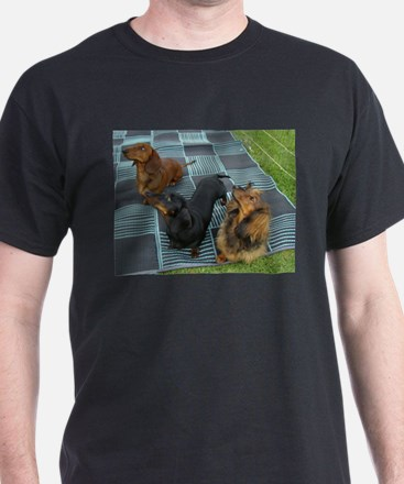 Dachshund Long Haired T-Shirt