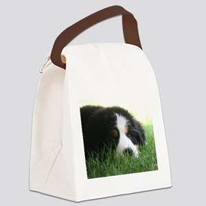 Bernese Puppy Canvas Lunch Bag