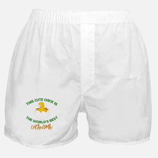 Cute Grandma Boxer Shorts