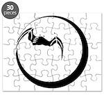 Moon and Bat Puzzle