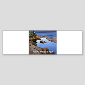 acadia1 Sticker (Bumper)