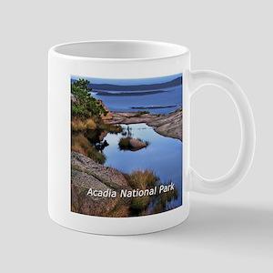 acadia1 Mug