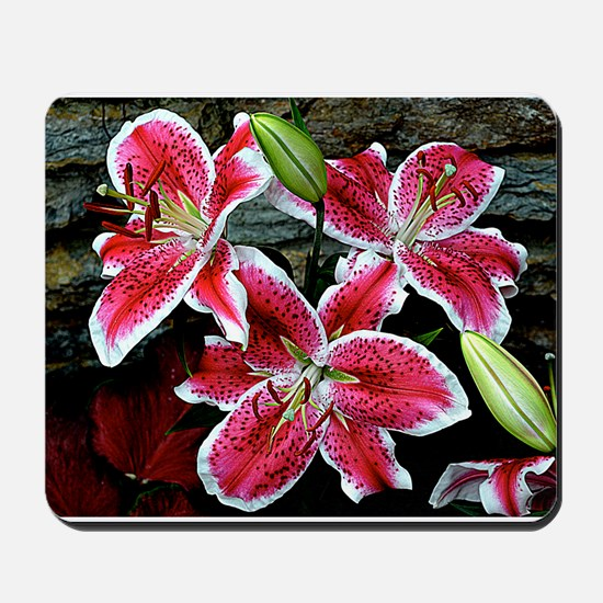 Lilly Explosion Mousepad