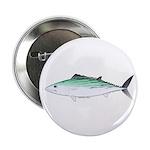 Bonito tuna fish 2.25
