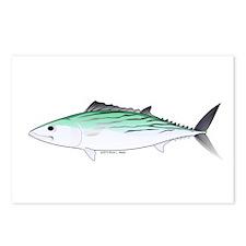 Bonito tuna fish Postcards (Package of 8)