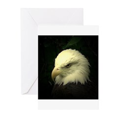 eagle with f/x Greeting Cards (Pk of 10)