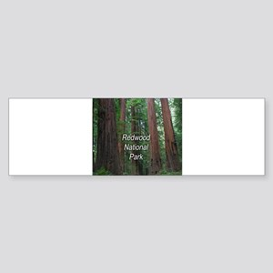 Redwood National Park Sticker (Bumper)
