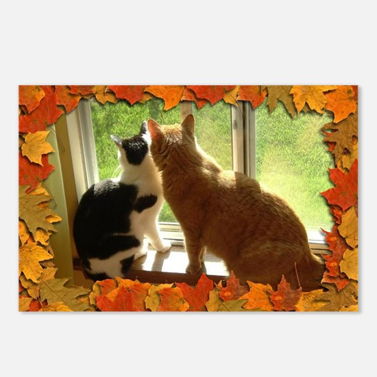 Autumn Cats/Orange Tabby Postcards (Package of 8)