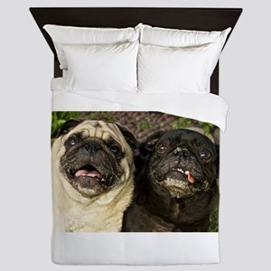 Pug Pair Queen Duvet