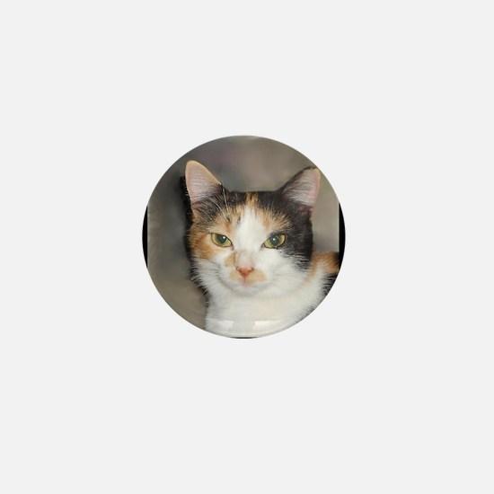 Heystack Kitty Mini Button