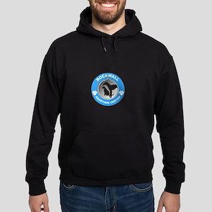 RAAC Logo Hoodie (dark)