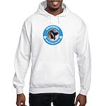 RAAC Logo Hooded Sweatshirt