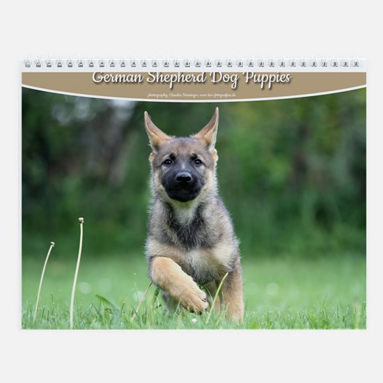 German Shepherd dog puppies Wall Calendar