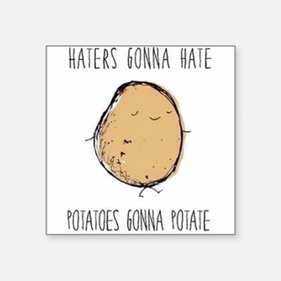 Haters Gonna Hate, Potatoes Gonna Potate Square St