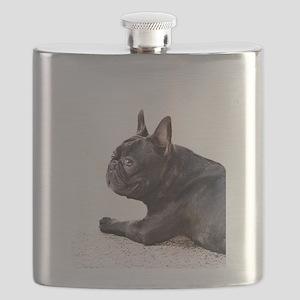 french bulldog a Flask