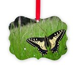 Anise Swallowtail Butterfly Picture Ornament