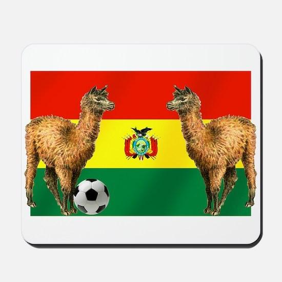 Bolivian Soccer Flag Mousepad