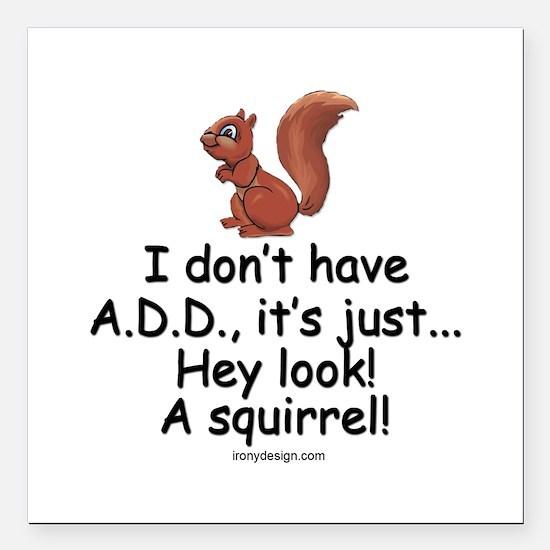 "I Don't Have A.D.D. Squirrel Square Car Magnet 3"""