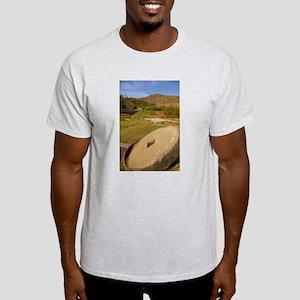 sjohnthing, peak-a-veiw. Light T-Shirt