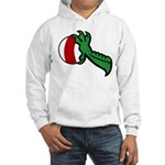 Midrealm Dragon's Treasure Hooded Sweatshirt