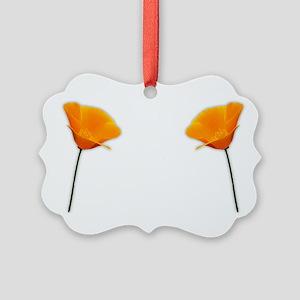 California Poppy Picture Ornament