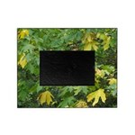 Fall Leaves Picture Frame