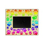 Rainbow Cougar Tracks Picture Frame