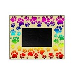Cougar Tracks Rainbow Picture Frame