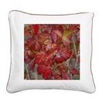Red Poison Oak Leaves Square Canvas Pillo