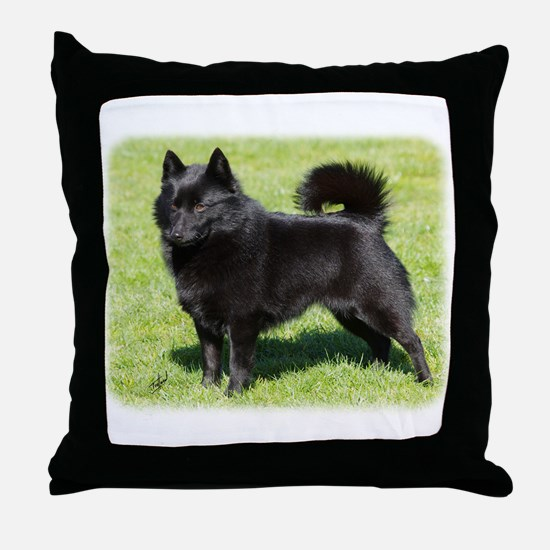 Schipperke AF071D-355 Throw Pillow