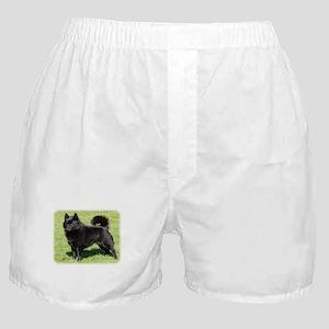 Schipperke AF071D-355 Boxer Shorts