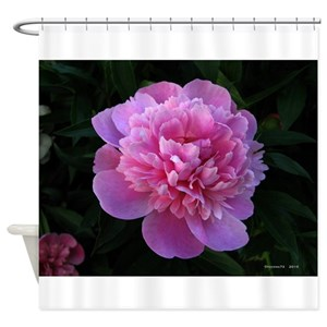 Pink Peony Shower Curtains