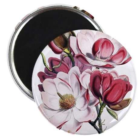 "Pink Magnolia Flowers 2.25"" Magnet (10 pack)"