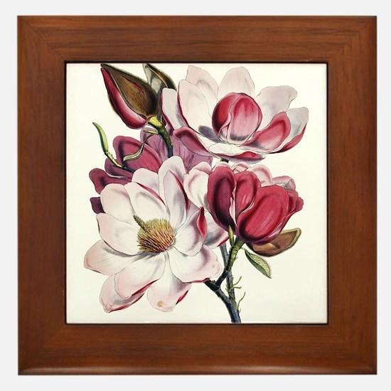 Pink Magnolia Flowers Framed Tile