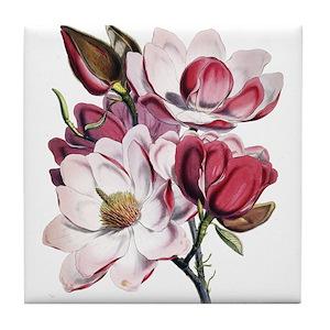 Pink magnolia coasters cafepress mightylinksfo
