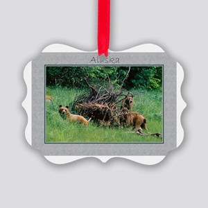 Alaska Brown Bear Cubs Picture Ornament