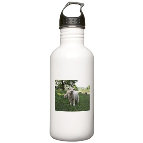 Funny Face Stainless Water Bottle 1.0L