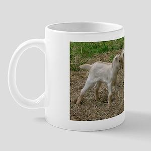 Best Baby Goat Mug