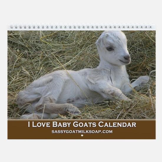 2013 I Love Baby Goats Wall Calendar