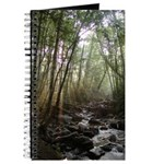 Mountain Forest Journal